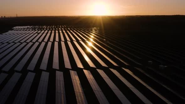 Thumbnail for Solar farm at sunrise