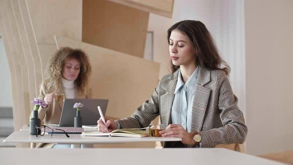 Thumbnail for Portrait of Woman Working in Office