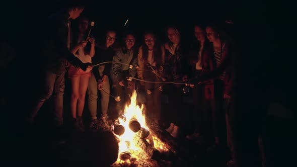 Thumbnail for Teens Roasting Marshmallows on Campfire