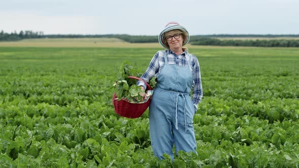 Thumbnail for Woman Standing On Field Of Beets.