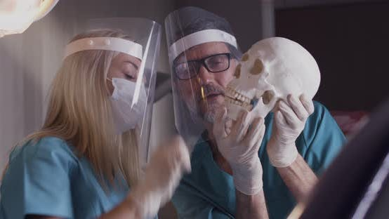 Thumbnail for Coworking Dentists Discussing Skull Anatomy