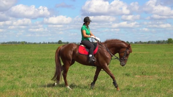 Thumbnail for Young Woman Rider Riding a Horse On The Field