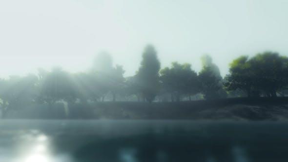 Thumbnail for Sunrise - Nature - River - Forest