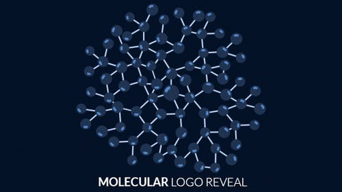 Molecular Logo Reveal