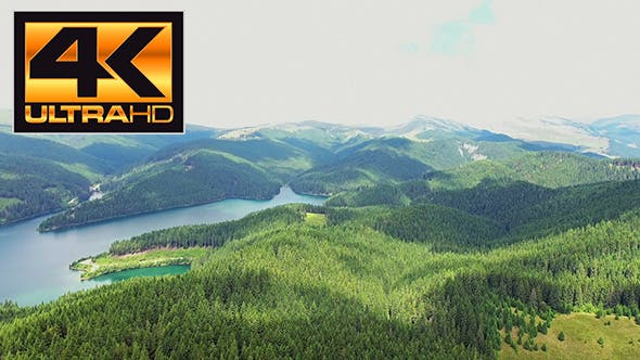 Thumbnail for Flying Over the Mountain Forest