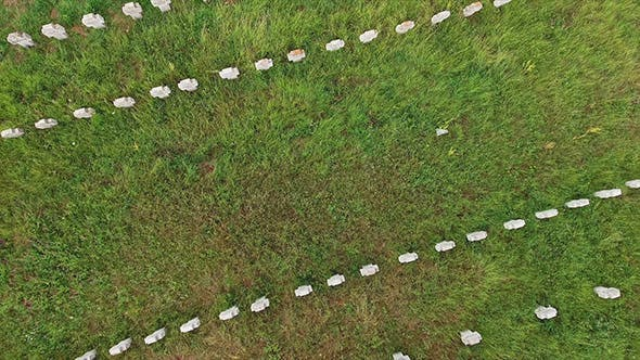 Thumbnail for Aerial View Of Graveyard