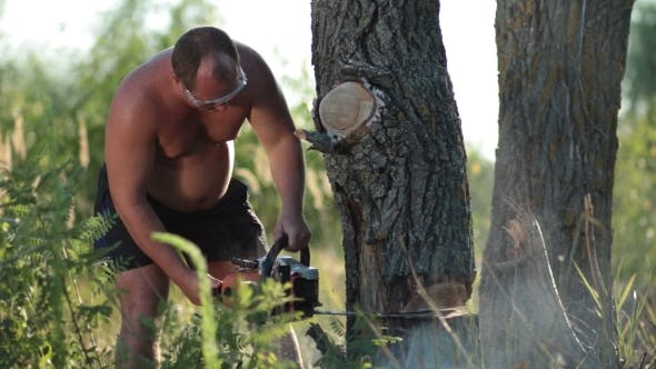 Thumbnail for Man In Glasses With Chainsaw Sawing a Dry Tree