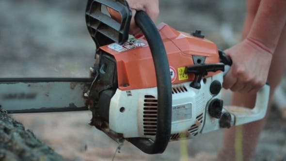 Thumbnail for Female Hand Sawing Trunk Of Dry Wood With Chainsaw