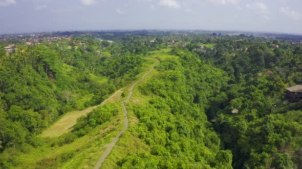 Cover Image for Panoramic Aerial View Campuhan Ridge Walk , Scenic Green Valley in Ubud, Bali, Indonesia.