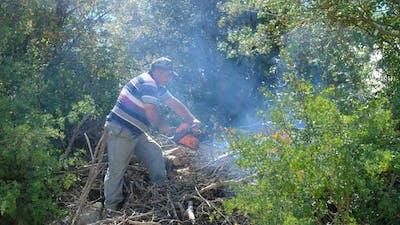 Man Cutting Wood with Chainsaw Garden