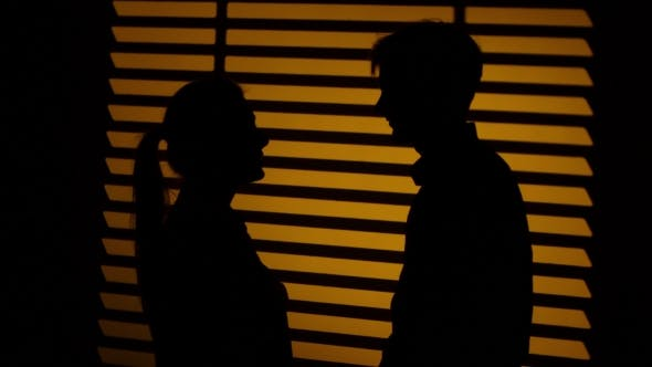Thumbnail for Man Gives The Woman a Decorative Heart. Silhouette.