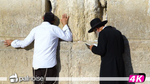 Cover Image for Jews Pray at Western Wall, Jerusalem Israel