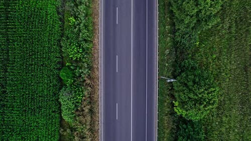 Car Riding on the Highway Through the Forest on Countryside