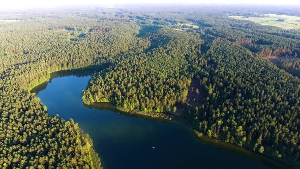 Thumbnail for Flying Above Beautiful Lake in Green Forest