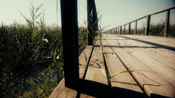 Thumbnail for Wooden Bridge Over The River. Reeds Grow Around