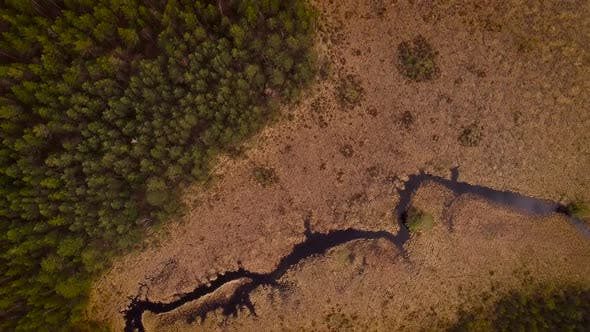 Thumbnail for Aerial view of Valgejarv lake, also known as a White lake, surrounding by a forest in Estonia.
