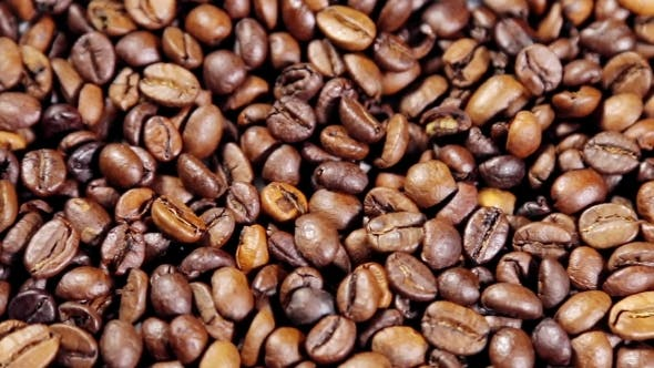 Thumbnail for Preparing Roasted Coffee Beans