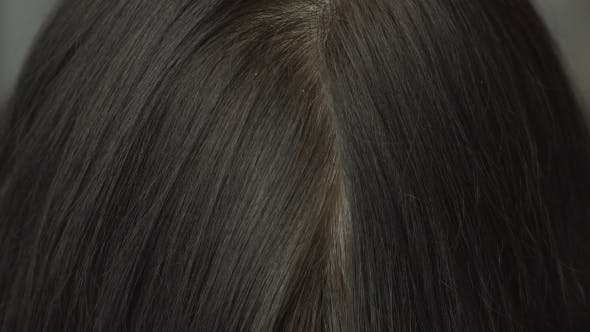 The Roots Of Gray Hair.