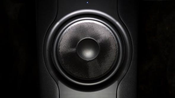 Thumbnail for Professional Studio Subwoofer Speaker
