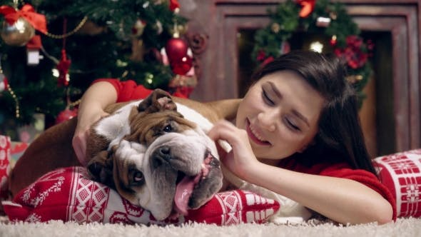 Thumbnail for Cute Girl Playing With Bulldog Under Fir-tree
