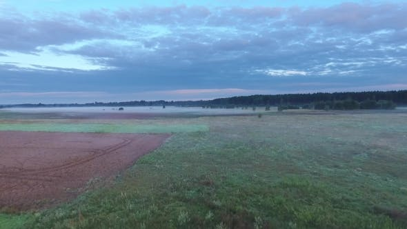 Thumbnail for Misty Fields In Morning Birds Eye View