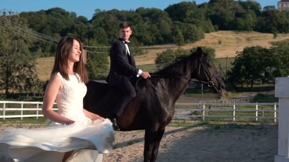 Thumbnail for Wedding Couple With Horse