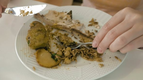 Thumbnail for Eating Fish And Fried Rise With Vegetables