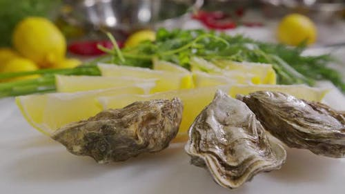 Oysters with Lemon Closeup. Fresh Oyster on Half Shell on Big Plate in Restaurant. Served Table. UHD