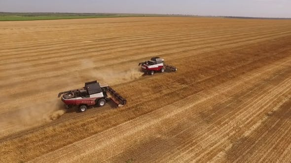 Thumbnail for Two Red-white Modern Harvesters Working On a Field In Harvest Time,aerial Shot, Drone Flying Around
