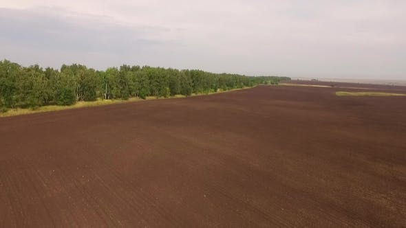 Thumbnail for Aerial Shot Of Plowed And Seeded Field Near Green Forest, Camera Moving Around