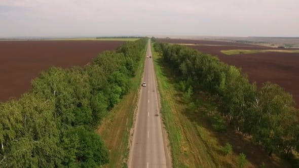 Thumbnail for Drone Flying Over Asphalt Road Between Two Plowed Fields In Countryside, Cars Moving Down