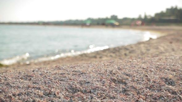 Cover Image for Sea Shore. Nature