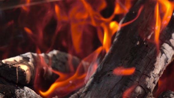 Thumbnail for Bright Burning Wood