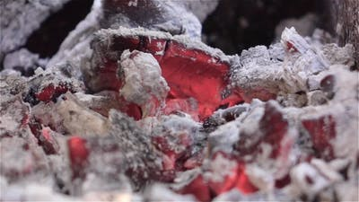 Smoldering Coals. White Ash.