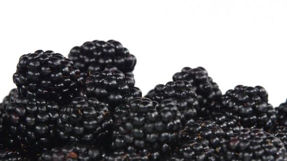 Thumbnail for Blackberry
