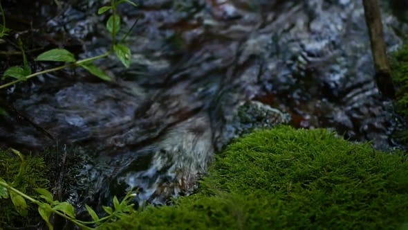 Thumbnail for Clean Drinking Spring Water Flowing From The Mountains To The Waterfall