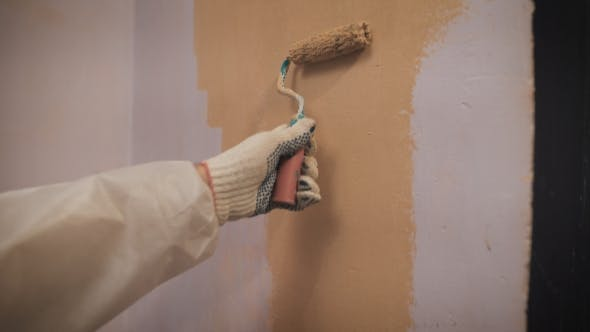 Thumbnail for Working With Roller Hand Paints The Wall In Orange Color.