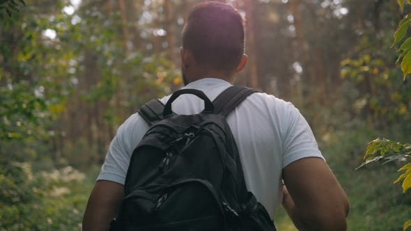 Thumbnail for Tourist Enjoying Fresh Air While Resting After Strolling In Forest In Sunny Autumn Day, Male In