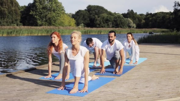 Thumbnail for Group Of People Making Yoga Exercises Outdoors 4