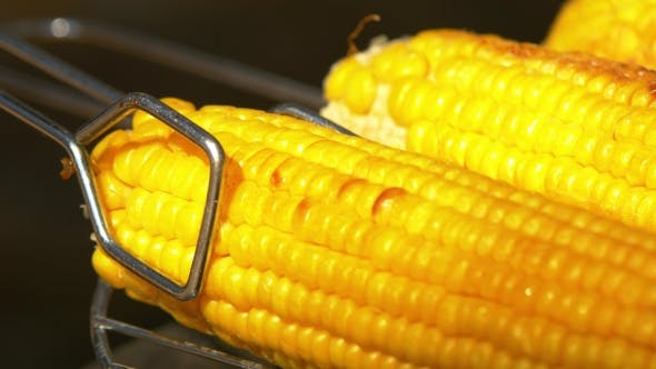 Healthy Vegetarian Barbecue With Ripe Golden Corn