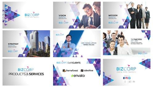 Triangle Corporate Profile