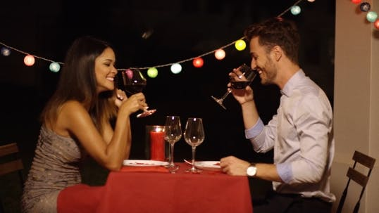Thumbnail for Good Looking Couple Toasts With Glasses Of Wine
