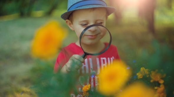 Thumbnail for Boy Exploring Flowers With a Magnifying Glass