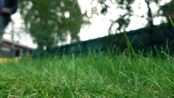 Thumbnail for Green Grass And Man With Lawnmower