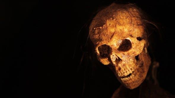 Skull Frightens