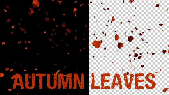 Thumbnail for Autumn Leaves