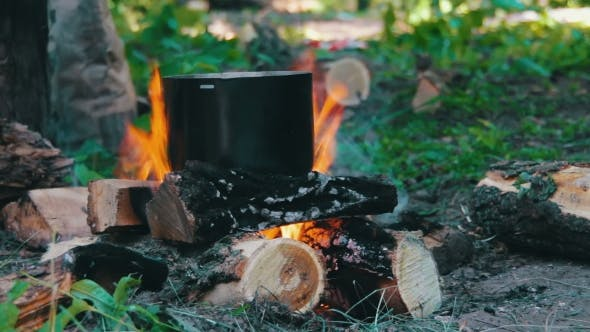 Cover Image for Pot On The Fire In Forest