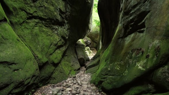 Thumbnail for Green Canyon In The Carpathian Mountains