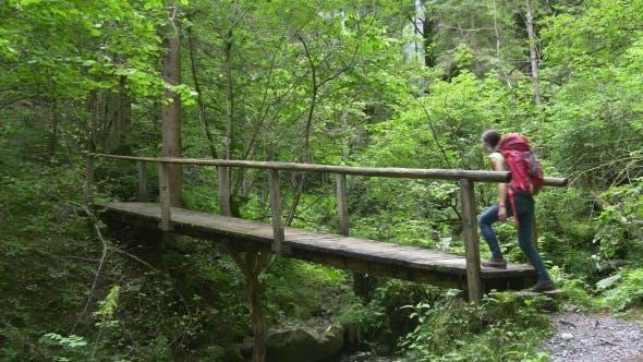 Thumbnail for Hiker Woman Crosses Bridge Walking To Waterfall
