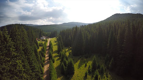 Thumbnail for Aerial Road on the Forest and Mountain